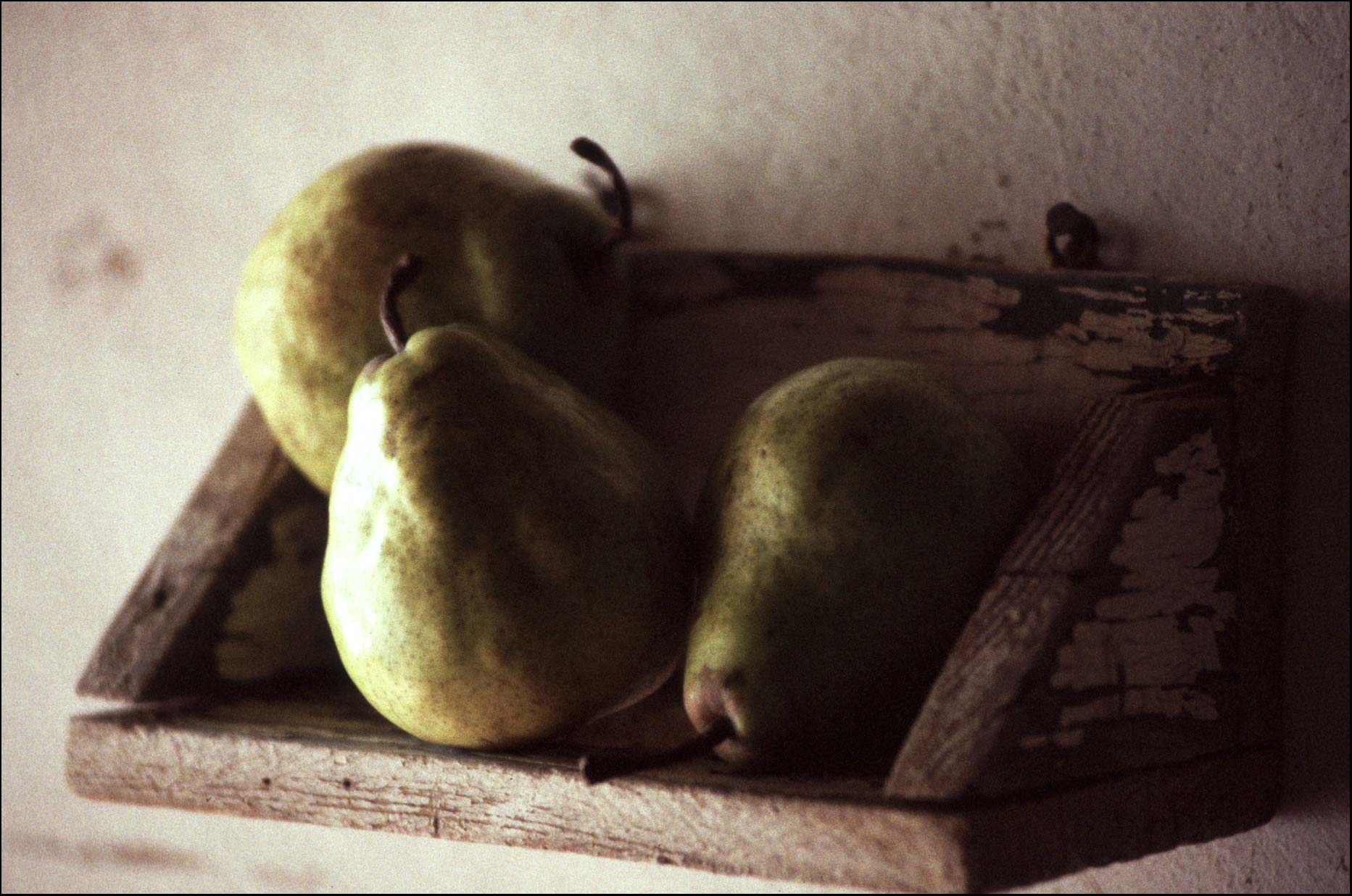 Pears on a shelf